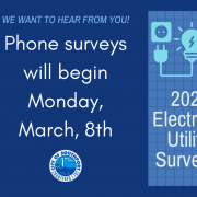 Electric Utility Survey